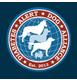 logo-diabetes